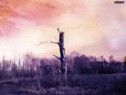 fldcx5ic dans fond ecran paysage violet
